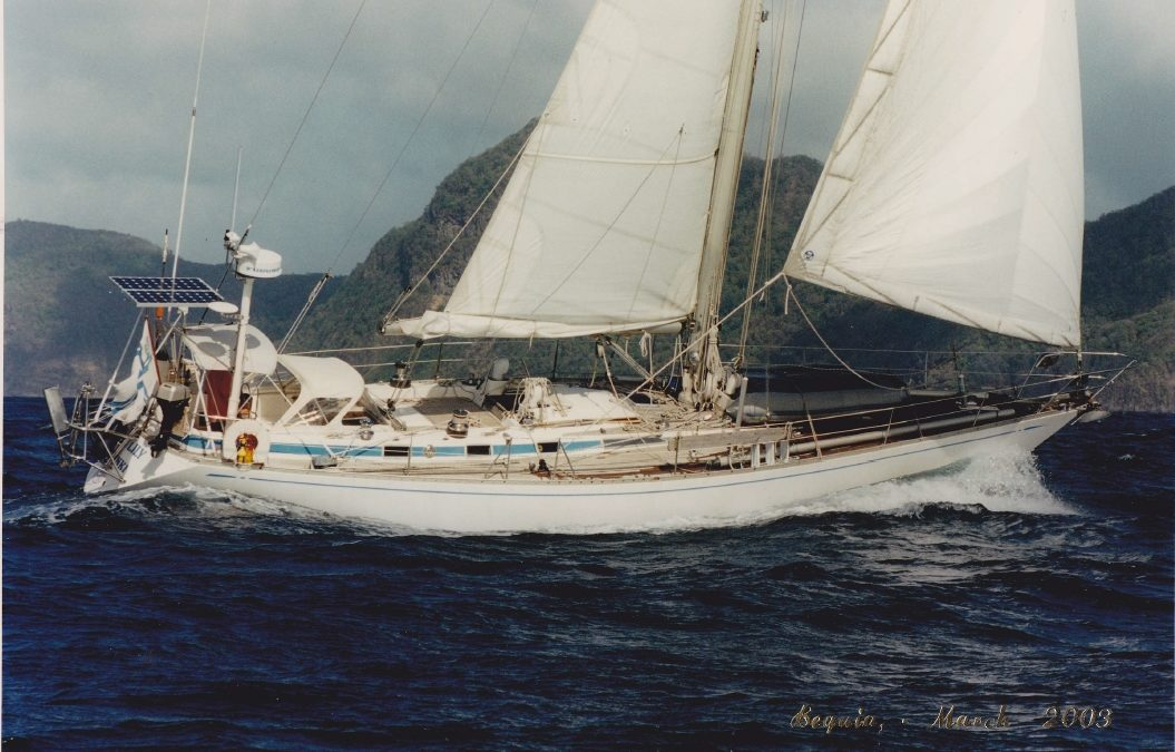 Tiger Lily, Swan 47